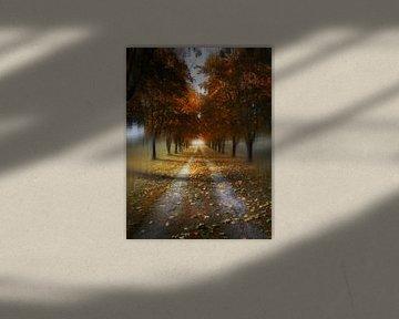 Autumn Lane van Lennert Trevels