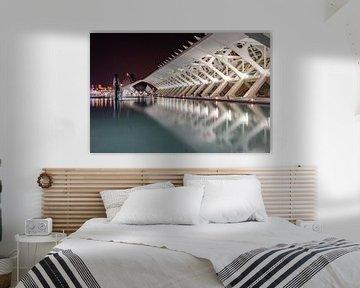 Architectuur Stad van de kunsten en wetenschap Valencia van Déwy de Wit