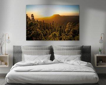 Tafelberg van La Gomera van Joris Pannemans - Loris Photography