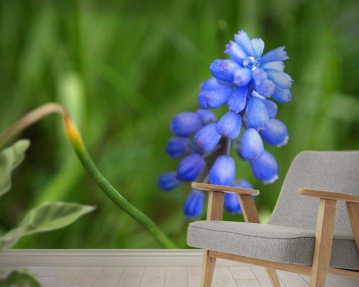 Sfeerimpressie behang: Het blauwe druifje met de diamant van Jon Houkes