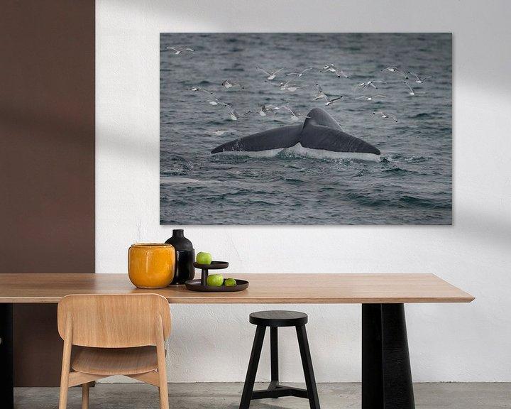 Beispiel: Der Schwanz des Blauwals von Menno Schaefer