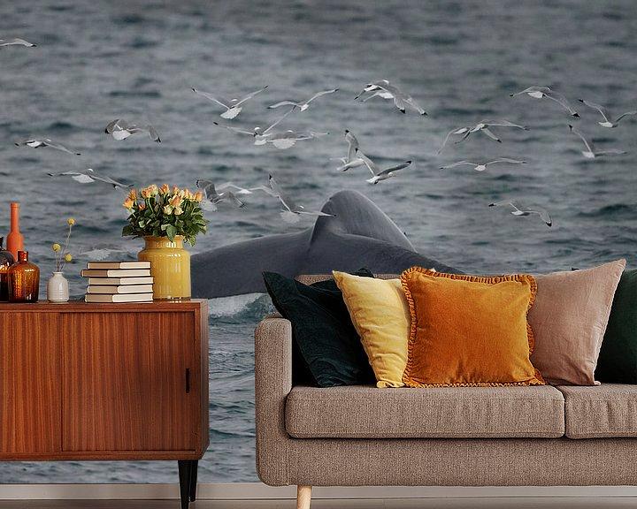 Beispiel fototapete: Der Schwanz des Blauwals von Menno Schaefer