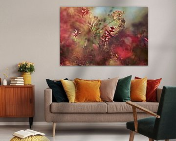 autumn red..nature's painting van Els Fonteine