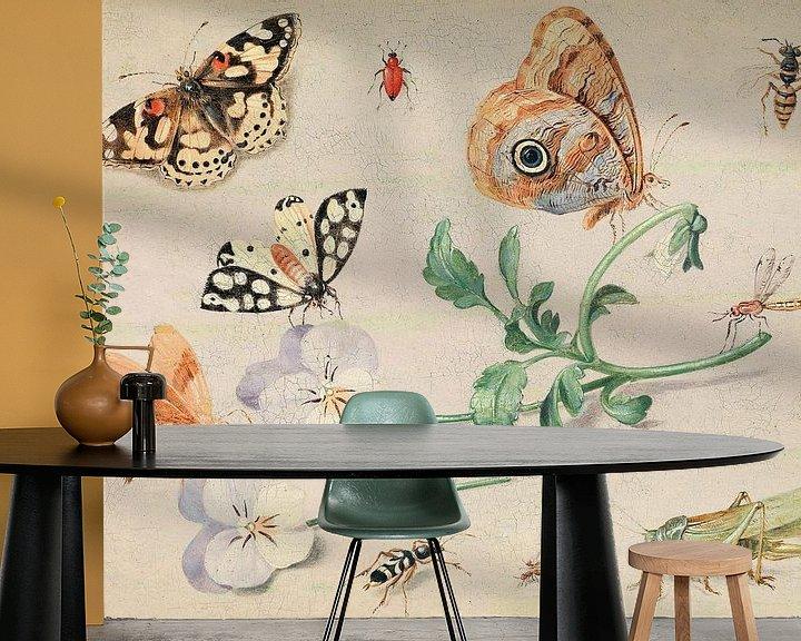 Beispiel fototapete: Studium von Insekten und Blumen, Jan van Kessel