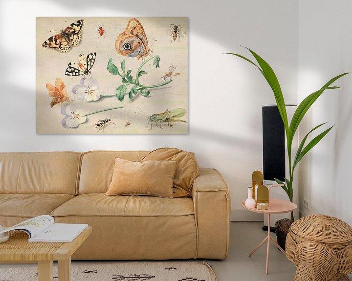 Beispiel: Studium von Insekten und Blumen, Jan van Kessel
