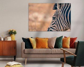 Nahaufnahme eines Zebras von Luuk Molenschot