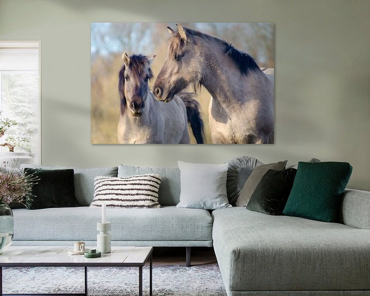 Sfeerimpressie: Twee paarden in de Palmerswaard van Mark Bolijn
