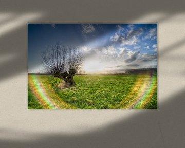 Umgekehrter Regenbogen von Mark Bolijn