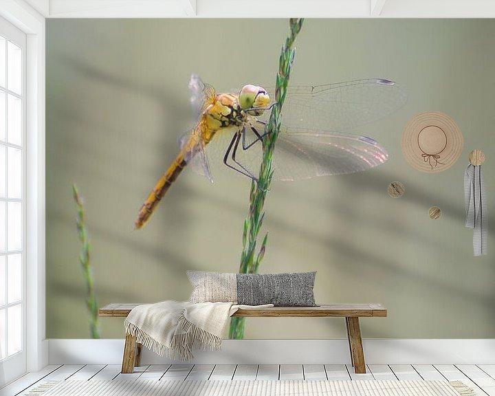 Sfeerimpressie behang: Libelle van Mark Bolijn