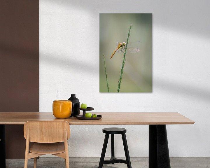 Sfeerimpressie: Libelle van Mark Bolijn