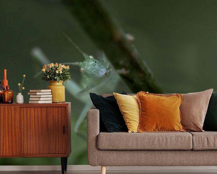 Sfeerimpressie behang: Zuidelijke boomsprinkhaan van Smeenk Fotografie