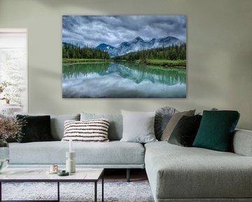 Blue River Canada Mudlake forest