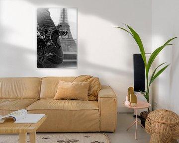 La Tour est en promotion van juvani photo