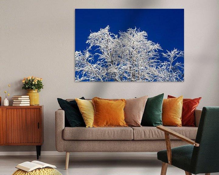 Beispiel: Ein wahrer Wintertraum! Angezuckerte Baumäste, tiefblauer Himmel - so stellt man sich den Winter vor von Rudolf Brandstätter