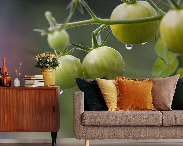 Beispiel fototapete: Unreife Mini-Tomaten hängen im Biogarten am Paradeiser-Strauch. von Rudolf Brandstätter
