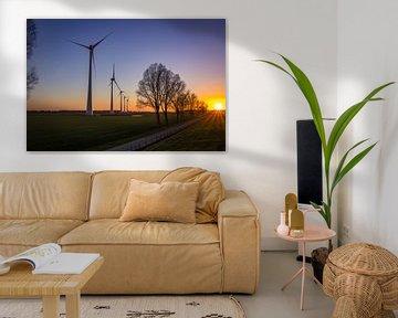 Windmolens van Frank Bison