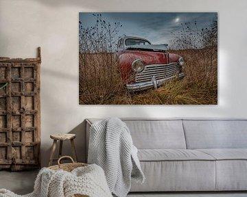 Verlassener Peugeot 203 von Arko Van pel