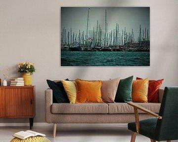 Zeilbootjes in de haven. van Tuur Wouters
