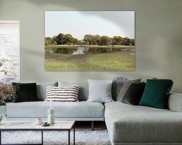 Le delta de l'Okavango est l'une des sept merveilles naturelles d'Afrique Botswana sur Tjeerd Kruse