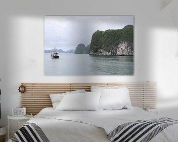Vietnamese rots in de rivier van mathieu van wezel