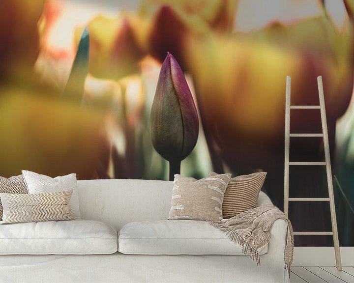 Impression: Floraison tardive sur Pim Haring