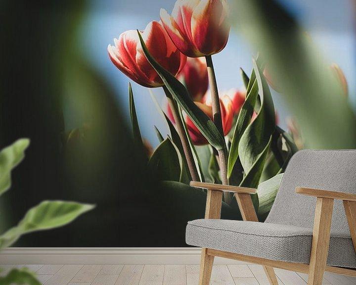 Sfeerimpressie behang: Tulpen in een natuurlijk doorkijkje van Pim Haring