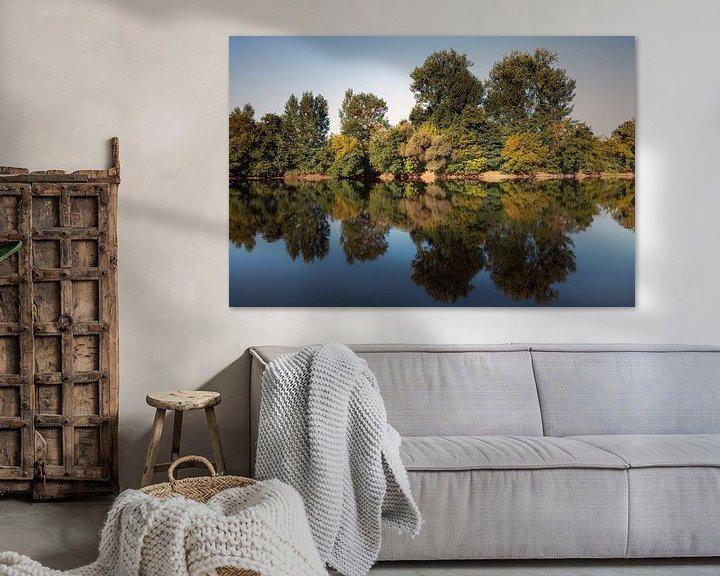 Sfeerimpressie: Franse spiegel van Jan van der Knaap