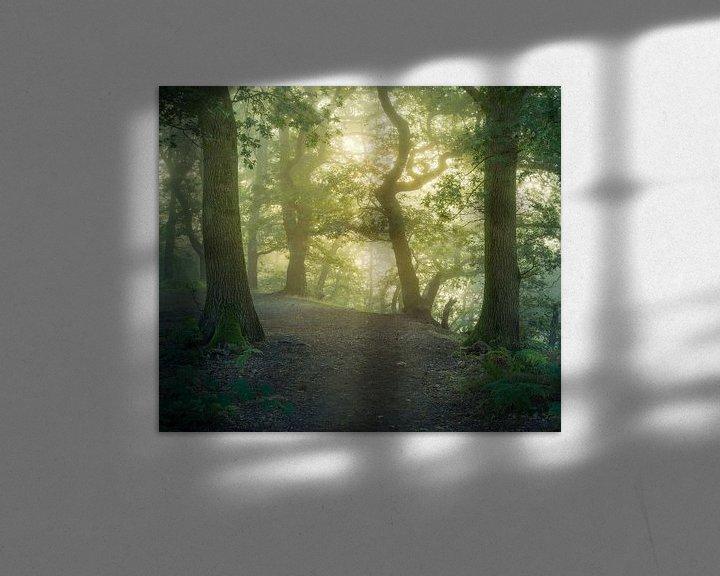 Sfeerimpressie: Vroeg in de ochtend op de Grebbeberg van Tim Abeln