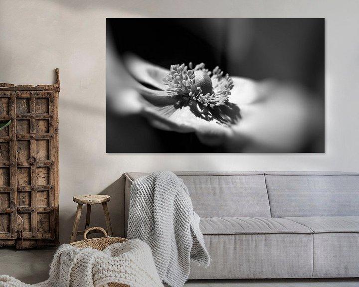 Sfeerimpressie: Anemoon in zwart wit. van Leo Langen