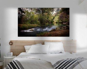 Water in de Dordogne van Jan van der Knaap