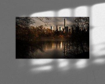 Central Park Fall van Menko van der Leij