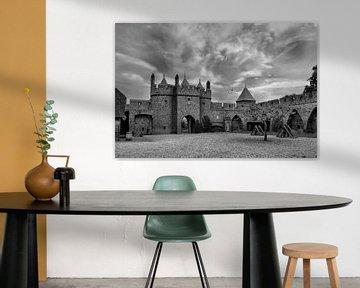 S/W Schloss Doornenburg, Doornburg, Niederlande von Maarten Kost