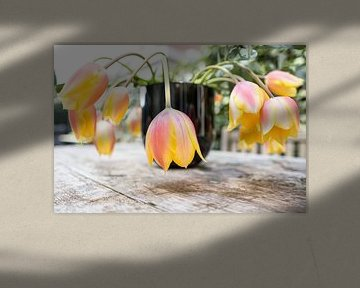 Tulpen van de Markt 02 van Marc  Verbeek