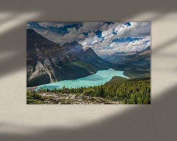 Peyto Lake (Canada) van Eelke Brandsma