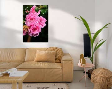 Ein Haufen Rosen. von Gerard de Zwaan