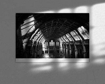 National History Museum London Schwarz-Weiß-Foto von Mireille Schipper