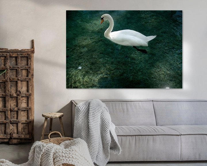 Sfeerimpressie: Swan Annecy van Mariska Hofman