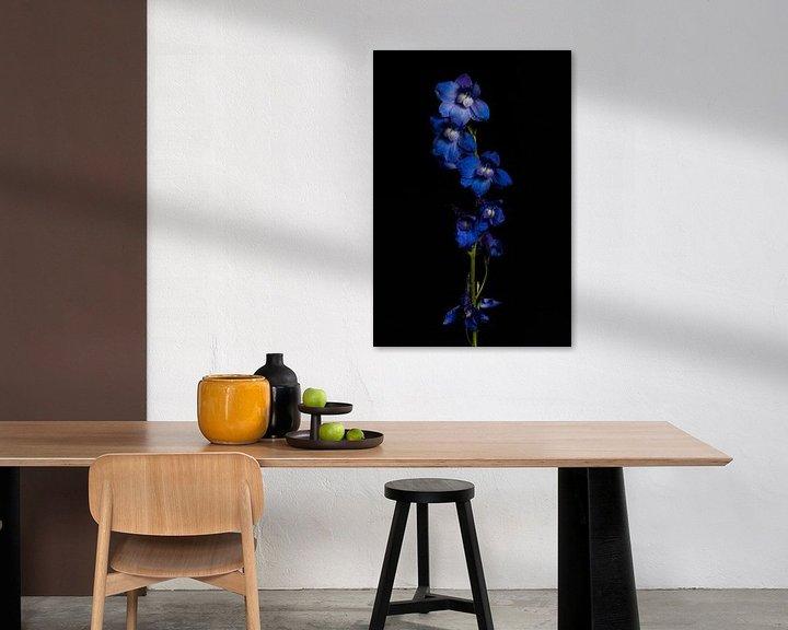 Beispiel: Ritterspornblüten von Tim Abeln