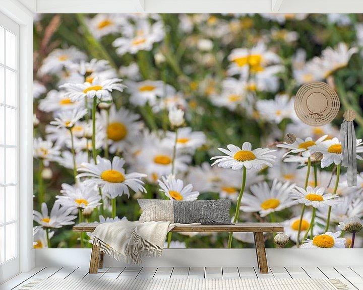 Sfeerimpressie behang: Wilde margrieten van dichtbij van Ruud Morijn