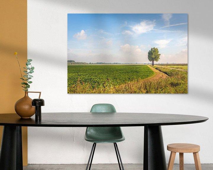 Beispiel: Malerische niederländische Landschaft in Noord-Brabant von Ruud Morijn