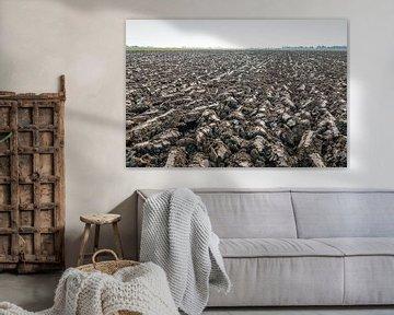 Pas geploegde akker van Nederlandse rivierklei van Ruud Morijn