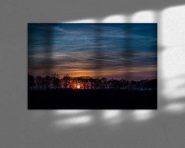 Boomdijk met ondergaande zon van René Groenendijk