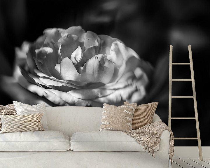 Impression: Rose en noir et blanc. sur Leo Langen
