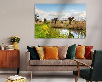 Paysage coloré de polders hollandais avec moulin à vent sur Ruud Morijn
