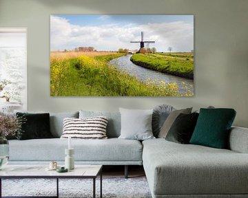 Kleurrijk typisch Nederlands landschap met molen in de lente van Ruud Morijn