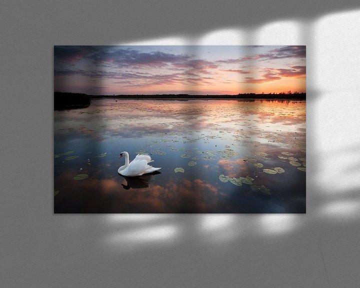 Beispiel: Bad Buchau Federsee mit Schwan im Sonnenuntergang von Jiri Viehmann