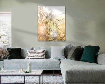 lichtstroom van Severin Frank Fotografie