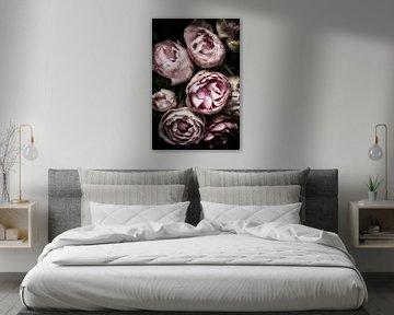 Rosen von Claudia Moeckel