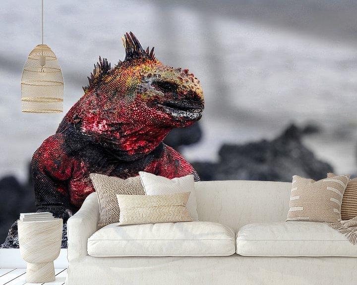 Beispiel fototapete: Galapagos Dragon von Ma.Rota