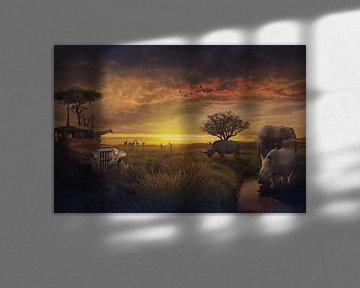 La beauté de l'Afrique sur Bert Hooijer